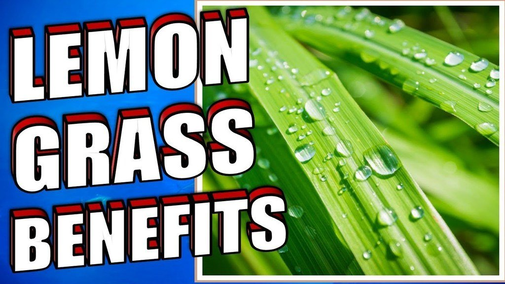 Lemon Grass Benefits