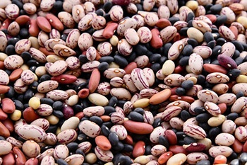 Beans are the best best foods for naturally raising haemoglobin levels