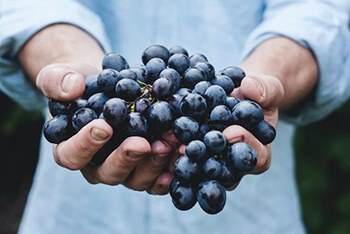 Grapes can relax blood vessels to allow blood flow to damaged back tissues
