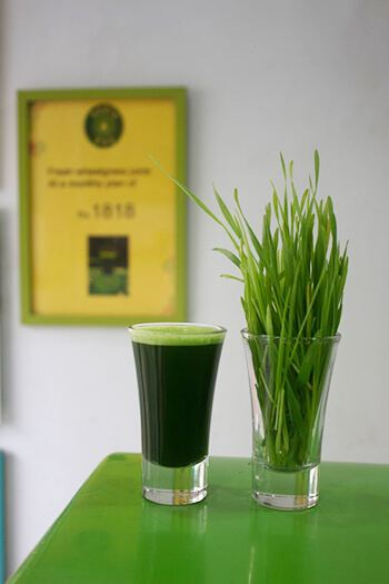 Green juice contains vegetables and fruits offering real source of multivitamins