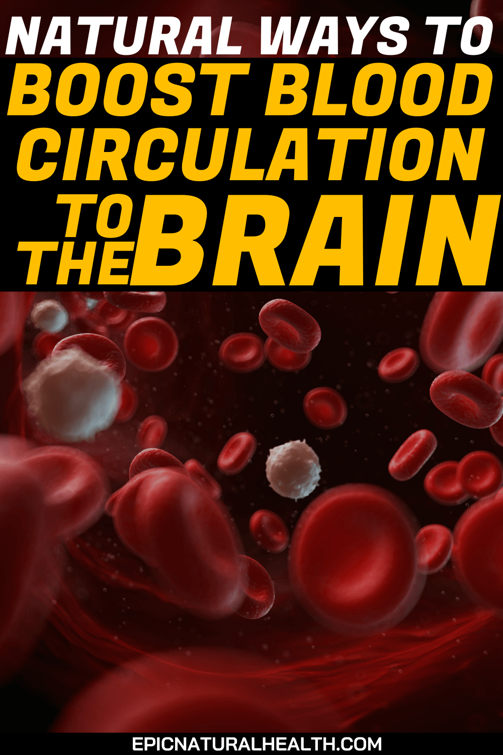 Natural Ways to Boost Blood Circulation to the Brain