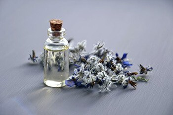 Use lavender oil to ward of bed bugs