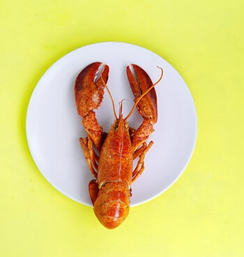 You'll most likely experience an allergic reaction from crustacean shellfish like lobster