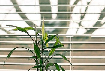 clean blinds using alcohol-soaked cloth wrapped in spatula