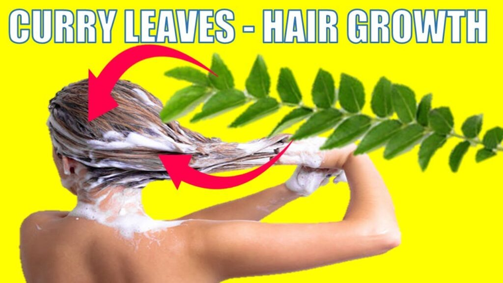 curry leaves - hair growth