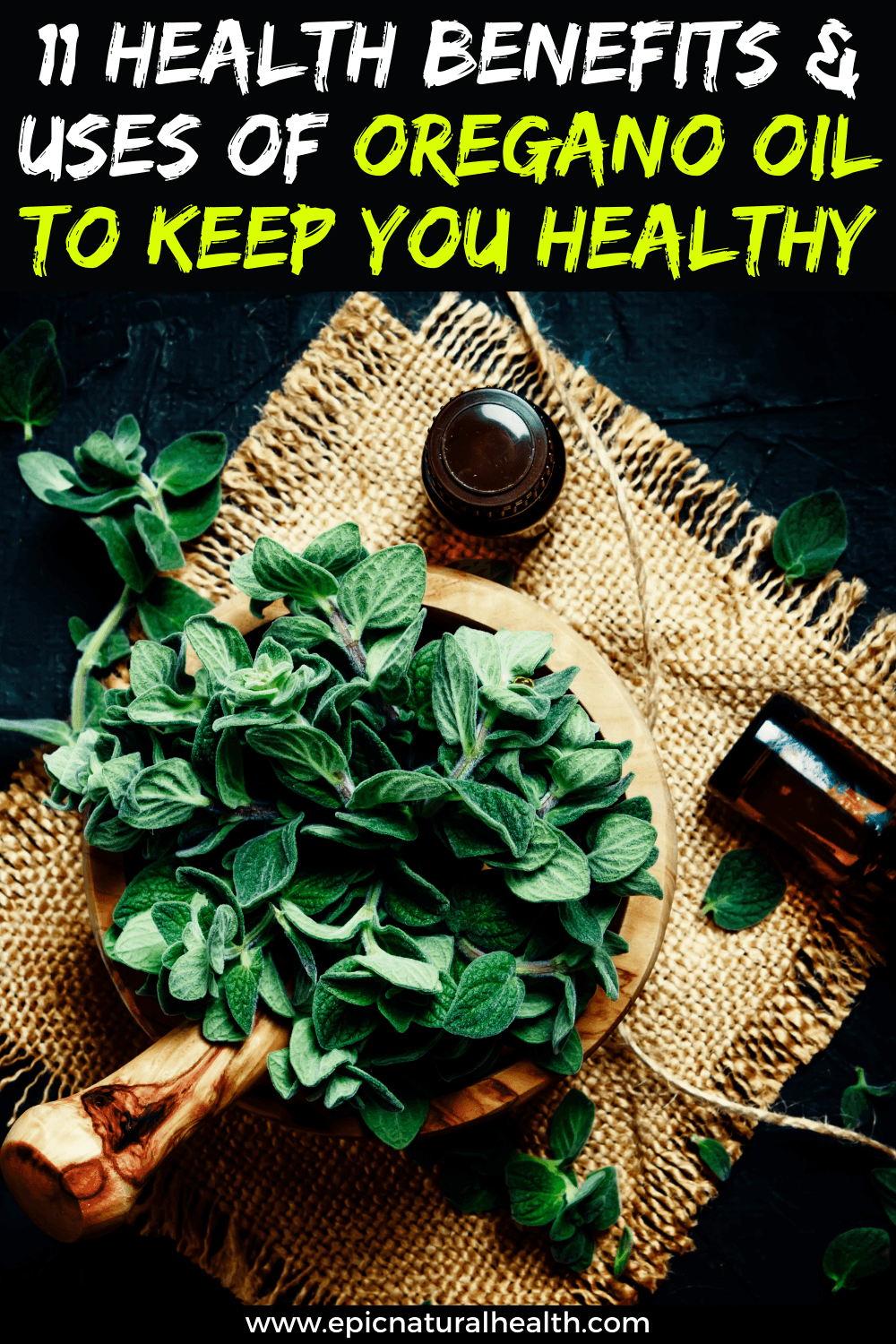 11 Health Benefits and uses of oregano oil to keep you healthy