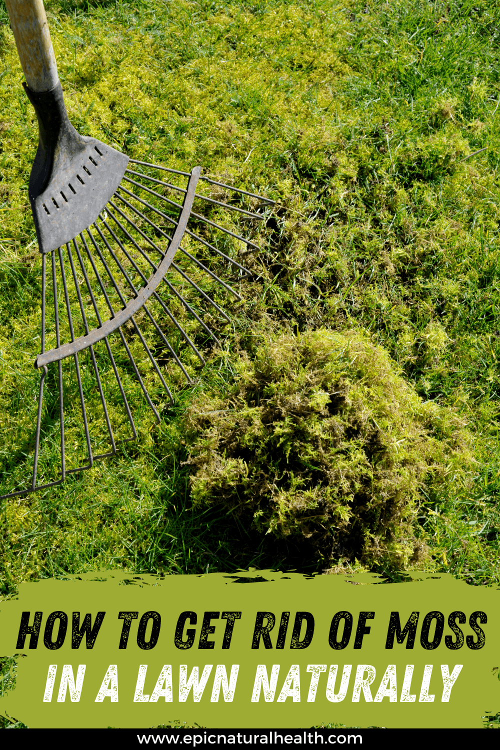 How to Get rid of moss in a lawn naturally