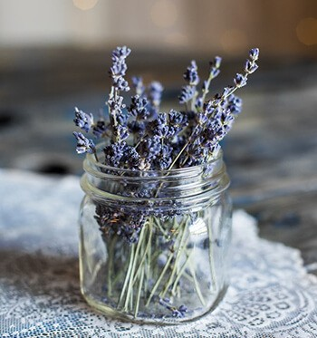 Lavender is a popular aromatherapy choice for sleep and relaxation