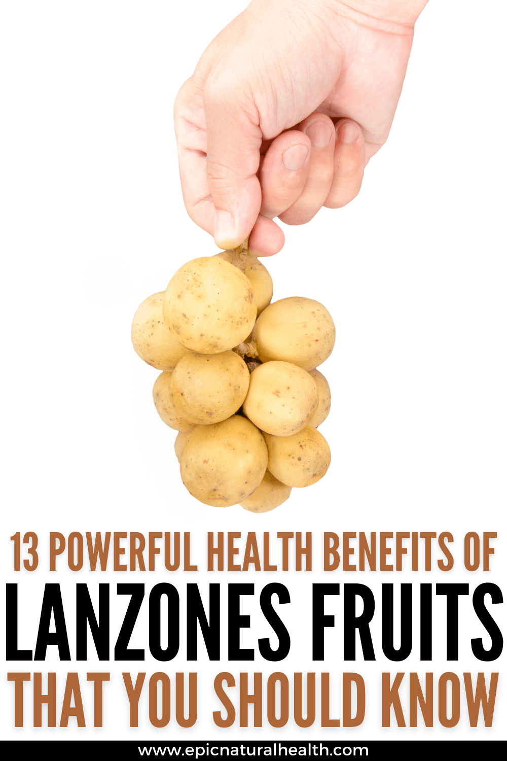 health benefits of lanzones fruits
