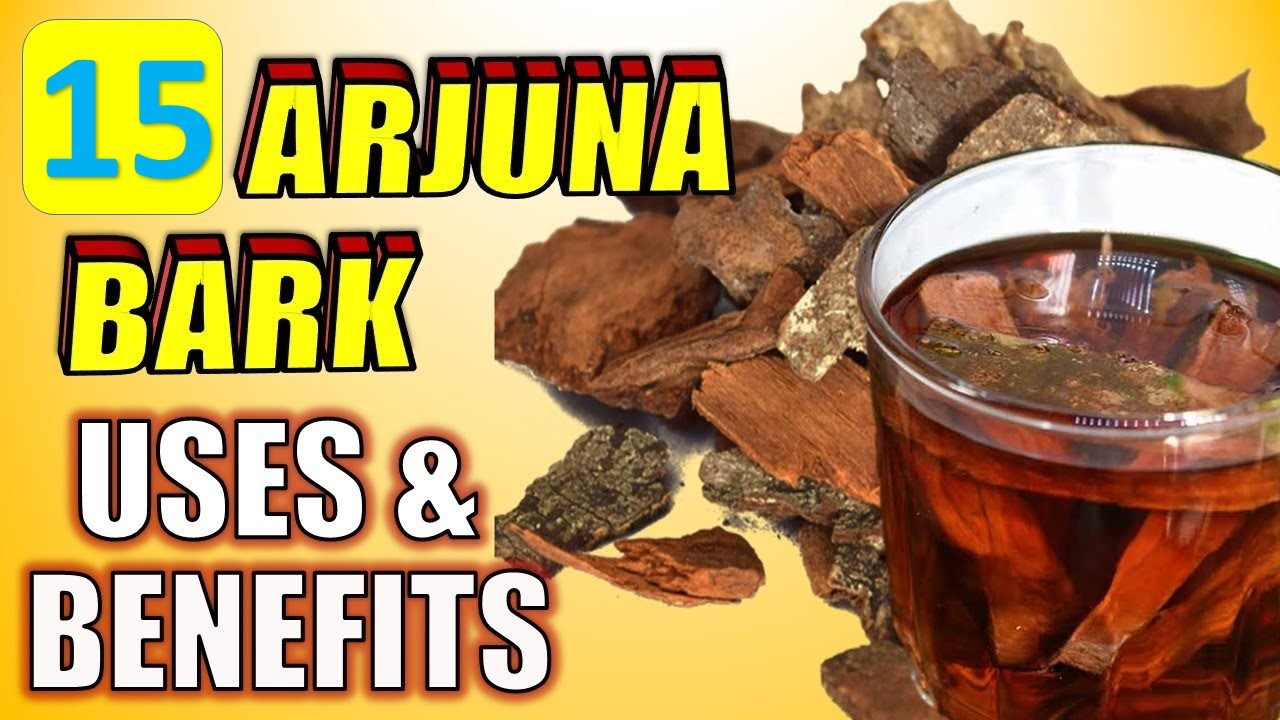 Arjuna Bark Uses and Benefits