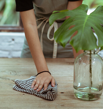 natural solution for cleaning surfaces