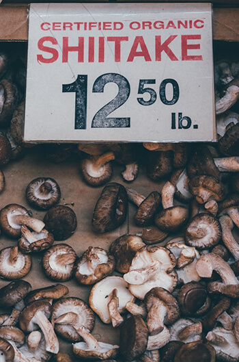shiitake mushroom contains the highest source of copper